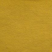 S08 OSLO mustard yellow